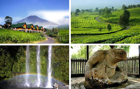 Nama nama Beken Nasional akan Kunjungan Wisata ke Baturaja, Lahat, Pagar Alam